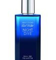 Davidoff Cool Water Night Dive men